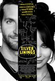 silver_linings_front_cover.jpg